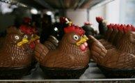 Chocolate hens