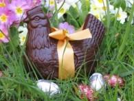 poule-en-chocolat