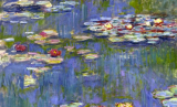 Monet Waterlilies
